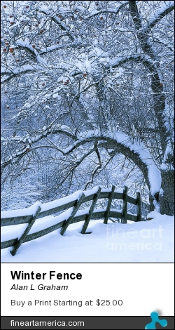 Winter Fence by Alan L Graham - Photograph - Photography