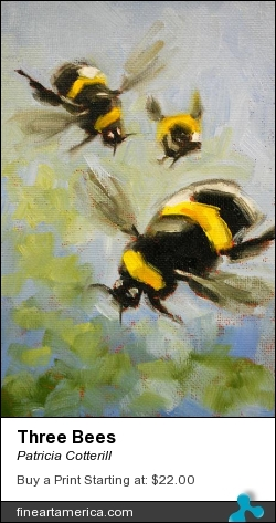Three Bees by Patricia Cotterill - Painting - Oil On Canvas