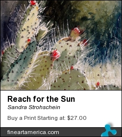 Reach For The Sun by Sandra Strohschein - Painting - Watercolor
