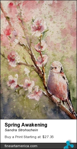 Spring Awakening by Sandra Strohschein - Painting - Watercolor