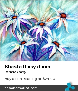 Shasta Daisy Dance by Janine Riley - Painting