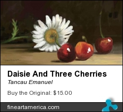 Daisie And Three Cherries by Tancau Emanuel - Painting - Oil