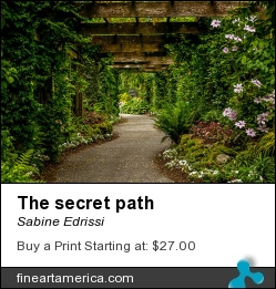 The Secret Path by Sabine Edrissi - Photograph - Photography