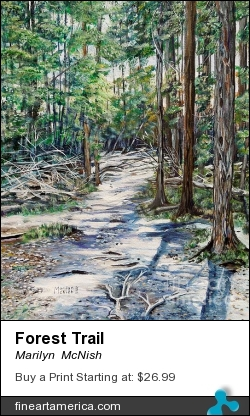 Forest Trail by Marilyn  McNish - Painting - Acrylic On Canvas