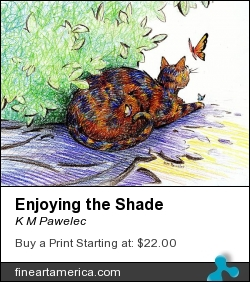 Enjoying The Shade by K M Pawelec - Drawing - Pencil
