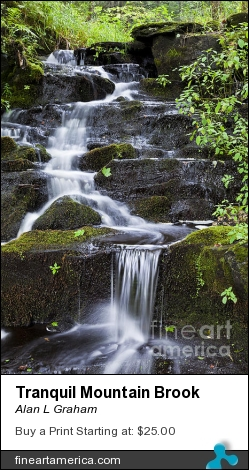 Tranquil Mountain Brook by Alan L Graham - Photograph - Photography