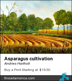 Asparagus Cultivation by Andries Hartholt - Painting - Oil On Canvas