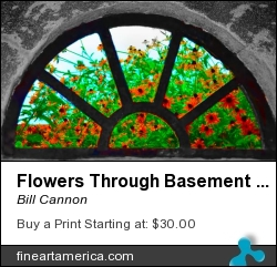 Flowers Through Basement Window At Monticello by Bill Cannon - Photograph - Photo