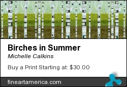 Birches In Summer by Michelle Calkins - Painting - Digital Painting
