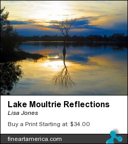 Lake Moultrie Reflections by Lisa Jones - Photograph - Photography