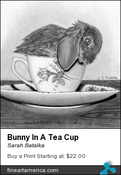 Bunny In A Tea Cup by Sarah Batalka - Drawing - Graphite Pencil On Paper
