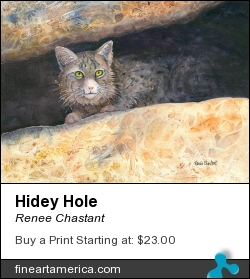 Hidey Hole by Renee Chastant - Painting - Watercolor On Paper