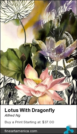 Lotus With Dragonfly by Alfred Ng - Mixed Media - Watercolor With Papercut