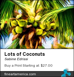 Lots Of Coconuts by Sabine Edrissi - Photograph - Photography/ Digital Art