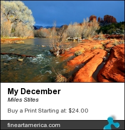 My December by Miles Stites - Photograph