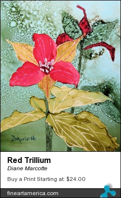 Red Trillium by Diane Marcotte - Painting - Alcohol Ink On Yupo