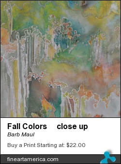Fall Colors Close Up by Barb Maul - Painting - Dyes, Resist On Silk