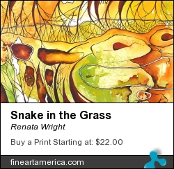 Snake In The Grass by Renata Wright - Painting - Watercolour On Paper