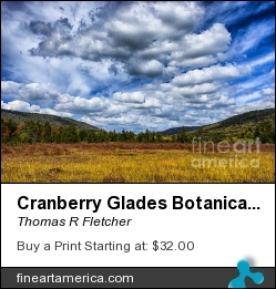 Cranberry Glades Botanical Area by Thomas R Fletcher - Photograph - Photography