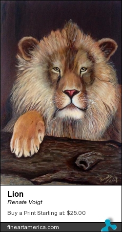 Lion by Renate Voigt - Painting - Oil On Canvas