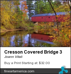 Cresson Covered Bridge 3 by Joann Vitali - Photograph - Photography