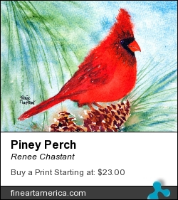 Piney Perch by Renee Chastant - Painting - Watercolor On Paper