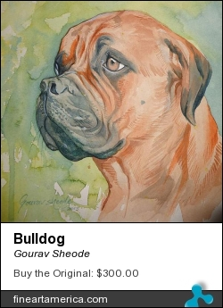 Bulldog by Gourav Sheode - Painting - Watercolor