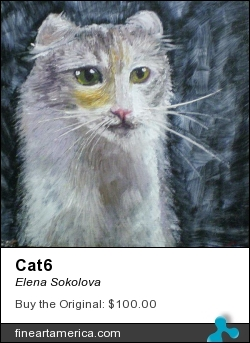 Cat6 by Elena Sokolova - Painting - Oil On Canvas