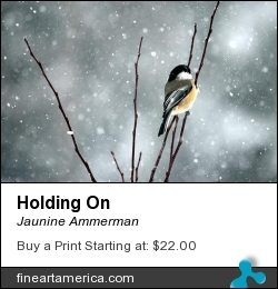 Holding On by Jaunine Ammerman - Photograph - Photographs