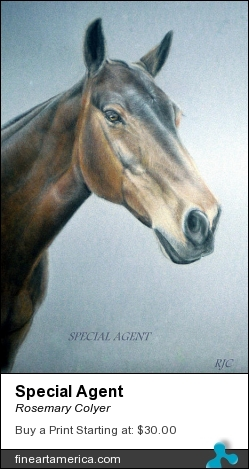Special Agent by Rosemary Colyer - Pastel - Pastel On Board