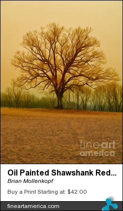 Oil Painted Shawshank Redemption Tree by Brian Mollenkopf - Photograph - Photographic Print