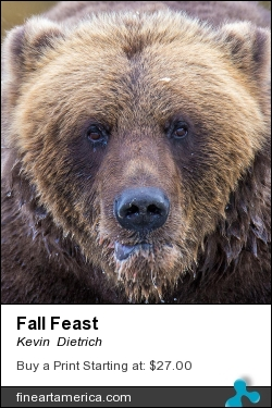 Fall Feast by Kevin Dietrich - Photograph - Photograph