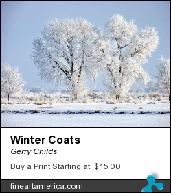 Winter Coats by Gerry Childs - Photograph