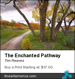 The Enchanted Pathway by Tim Reaves - Photograph - Photography