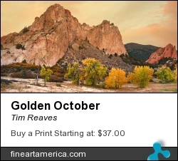Golden October by Tim Reaves - Photograph - Photography