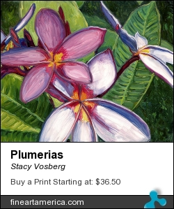 Plumerias by Stacy Vosberg - Painting - Oil On Panel