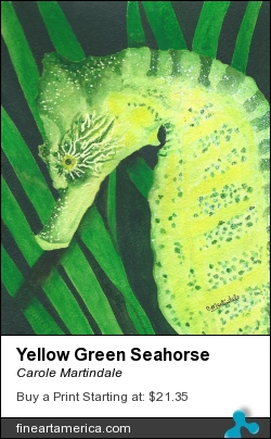 Yellow Green Seahorse by Carole Martindale - Painting - Watercolor On Watercolor Paper