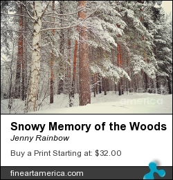 Snowy Memory Of The Woods by Jenny Rainbow - Photograph - Photography