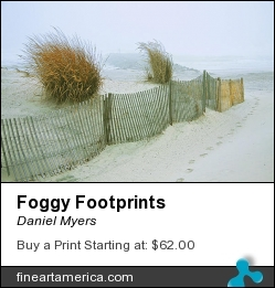 Foggy Footprints by Daniel Myers - Photograph - Photography