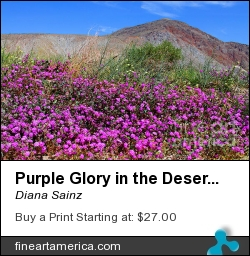 Purple Glory In The Desert By Diana Sainz by Diana Sainz - Photograph - Photography - Digital Photography