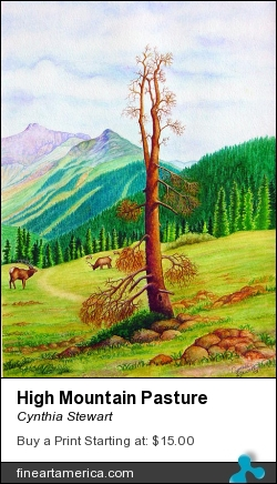 High Mountain Pasture by Cynthia Stewart - Painting - Watercolor