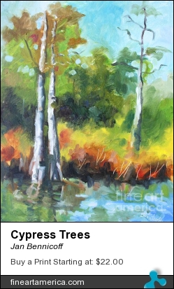 Cypress Trees by Jan Bennicoff - Painting - Alkyds On Stretched Canvas