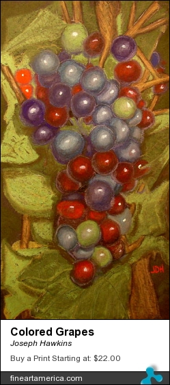 Colored Grapes by Joseph Hawkins - Pastel - Oil On Canvas