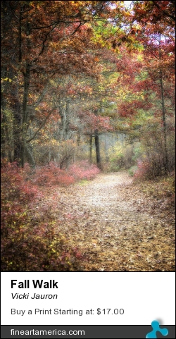 Fall Walk by Vicki Jauron - Photograph - Photography