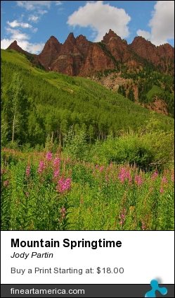 Mountain Springtime by Jody Partin - Photograph - Photograph