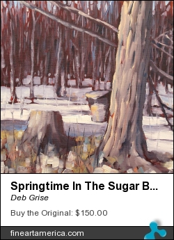 Springtime In The Sugar Bush by Deb Grise - Painting - Oil