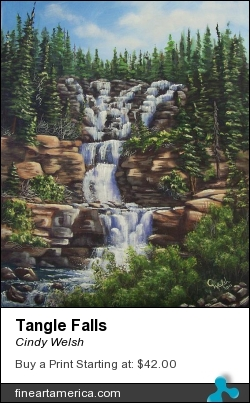Tangle Falls by Cindy Welsh - Painting - Acrylic On Canvas Board