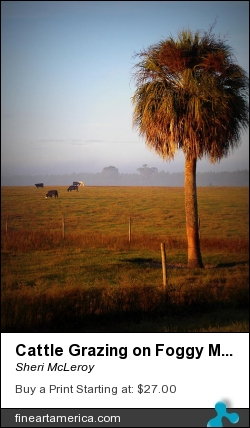 Cattle Grazing On Foggy Morning 1 by Sheri McLeroy - Photograph - Photography