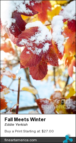 Fall Meets Winter by Eddie Yerkish - Photograph - Photograph