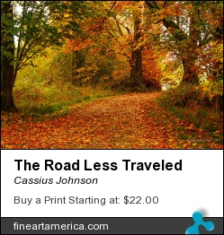 The Road Less Traveled by Cassius Johnson - Photograph - Photograph